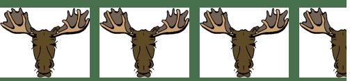 a11dd-3-52bmoose