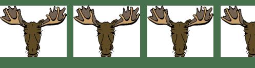 c1538-42bmoose