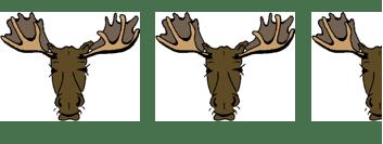 2.5 moose