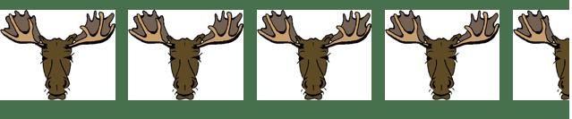 4-5-moose.png