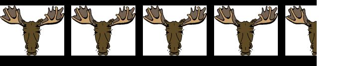 4.5 moose